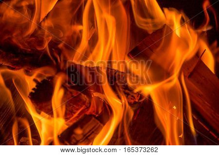 flames emanate from wood at a camp fire