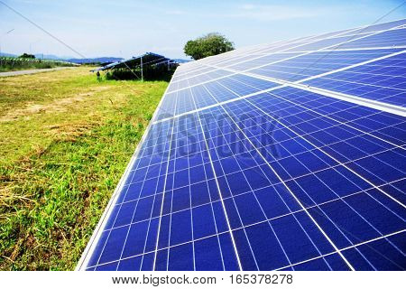 Solar panels on the lawn with blue sky.