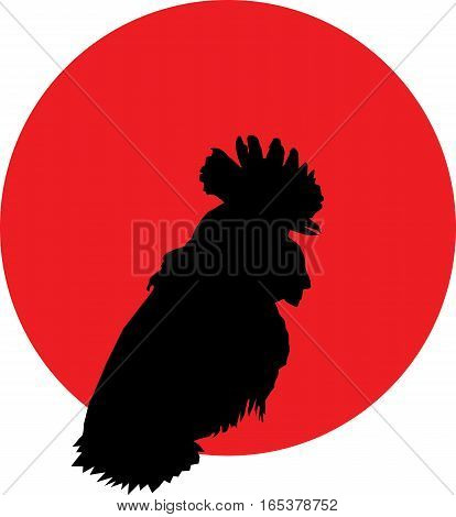 Rooster black silhouette portrait on red background logotype, vector, eps 10