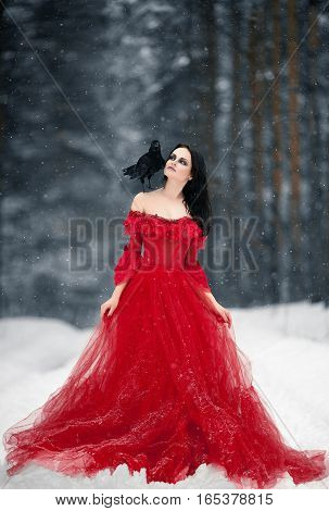 Woman witch in red dress and with raven on her shoulder in snowy forest. Her long dress lying on snow and she looks at raven. Around snowing and snowflakes fall on hem of her dress.