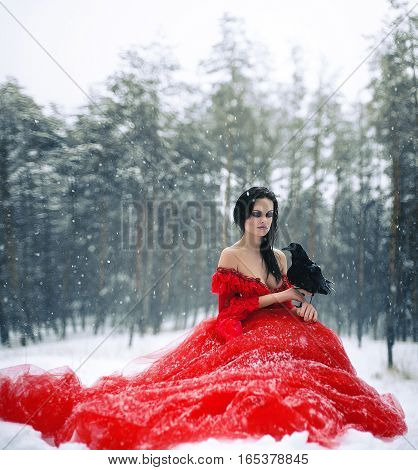 Woman witch in red dress with raven in her hand sits on snow in forest. Her long dress lying on snow she looks at raven. Around snowing and snowflakes fall on hem of her dress.