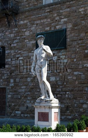 Michelangelo's David statue in Florence Italy Sunny day