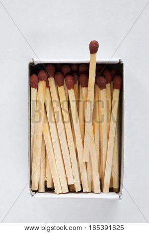 Closeup of matches in open match box.