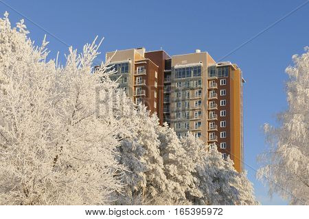 View on the modern highrise apartment building through snowy forest in winter sunny day.