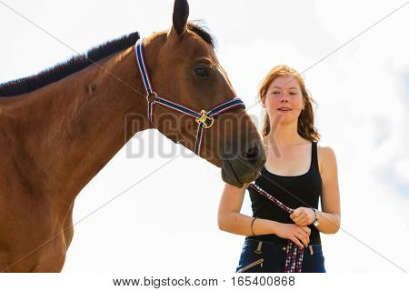 Jockey Young Girl Petting Brown Horse
