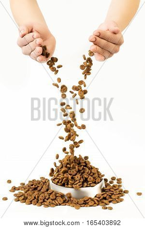 Pet Food Falls Into The Bowl For Feeding From Human Hands