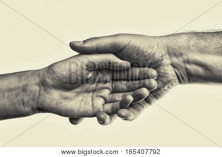 Male hand holds the female palm on toned background. That could mean help guardianship protection love care etc. This Image isolated for easy transfer in your design.