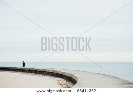 The Couple Walking on the Bridge to the Lake