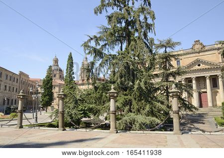 SALAMANCA, SPAIN - AUGUST 3, 2016: Historical buildings in Plaza of Anaya in Salamanca Spain