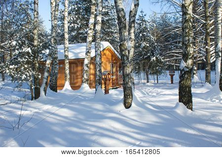 Small Brown wooden house in winter forest on white snow under clear blue sky