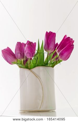 Beautiful Fresh Spring lila Tulips in Vase on bright background. Spring easter or Mother's Day Concept.
