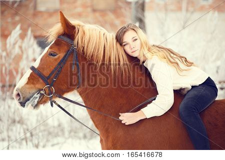 Young rider girl with long hair lying on horse neck. Friendship background. Warm color toned image