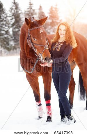Young rider girl standing with bay horse in sunset beams