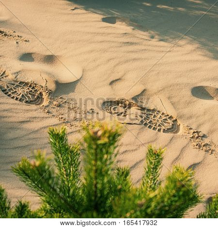traces of the shoe in the sand in the dunes