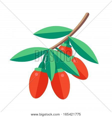 Goji Berries Vector Illustration. Superfood Wolfberry Icon. Healthy Detox Natural Product. Flat Desi