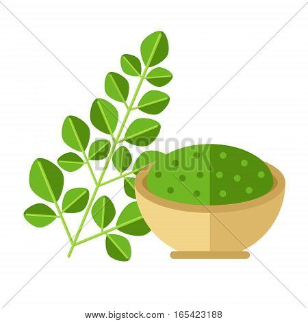 Moringa Plant With Leaves And Seed Powder. Vector Illustration. Superfood Moringaceae Family Icon. H