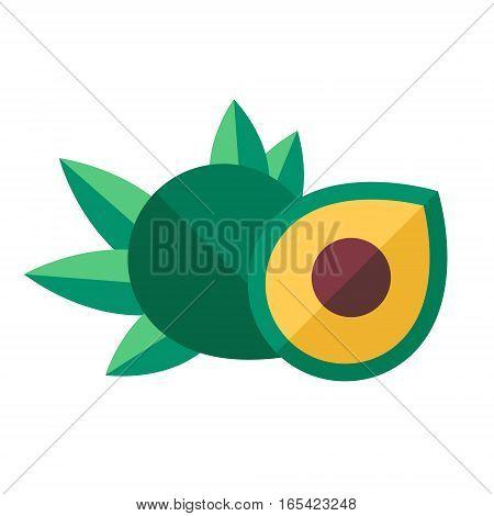 Lucuma Fruits And Leaves Vector Illustration. Superfood Pouteria Lucuma Icon. Healthy Detox Natural