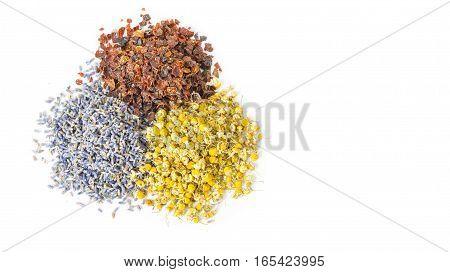 Dried herbs and flowers folk medicine of nature. Treats force of nature. Cynosbati Matricaria chamomilla lavandulae. Copy space