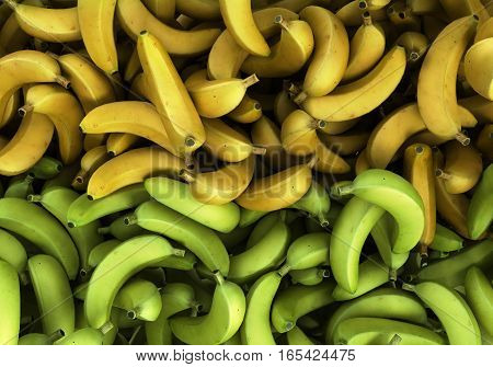Green And Yellow Bananas Backgrownd 3D Render Illustration