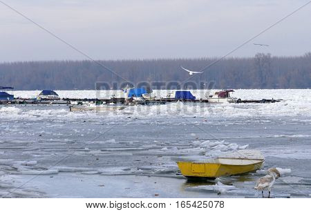 Belgrade, Serbia. January 16Th 2017: Trapped Boats Into The Frozen Danube River In Belgrade, Serbia