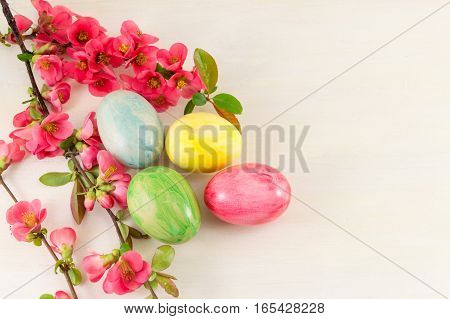 Painted Easter Eggs And Japanese Rose Flowers