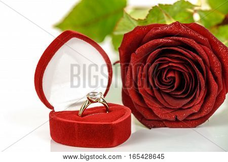 Gold engagement ring with diamonds in an elegant velvet box on the background of red rose.