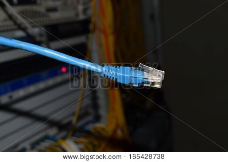 Blue internet cable on background servers in the server room patching cord