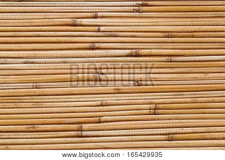 Dry reeds texture. Organic nature wallpaper of yellow cane. Natural warm wooden background with bamboo and straw poster