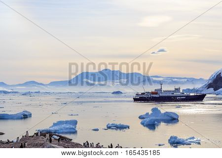 Antarctic Cruise Ship Among Icebergs And Gentoo Penguins On The Shore Of Neco Bay, Antarctica