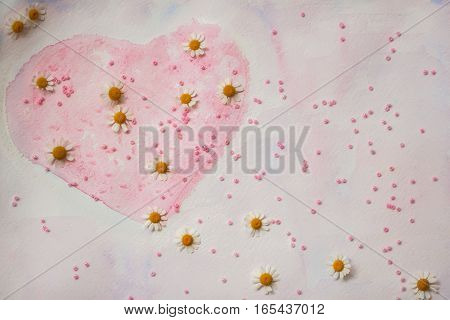 Hand-drawn watercolor heart, decorated with beads and fresh daisies - a symbol of Valentine's Day, on a pink background