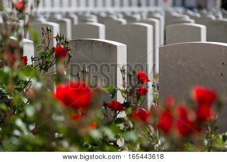 Tyne Cot World War One Cemetery the largest British War cemetery in the world in Passendale Belgium poster
