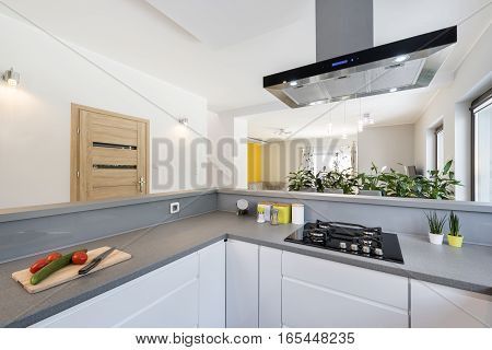 Modern bright clean kitchen interior design with stainless steel appliances in a luxury house