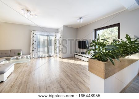 View of interior modern living room with wooden floor and fancy green flowers