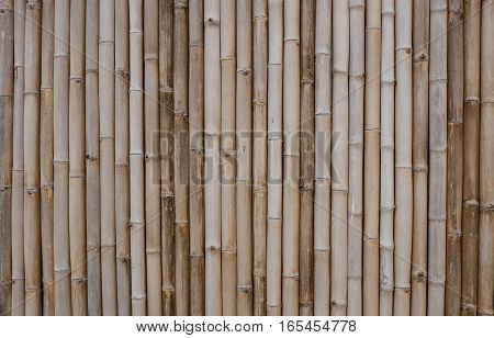 the gray bamboo fence background or texture