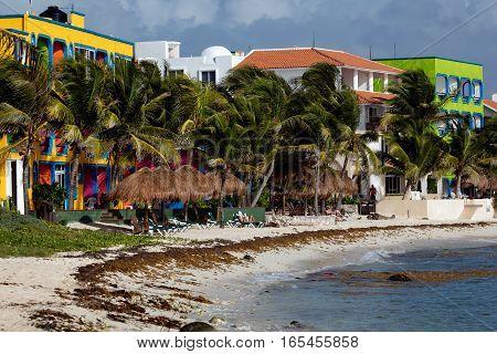 Akumal Beach In Quintana Roo, Yucatan, Mexico
