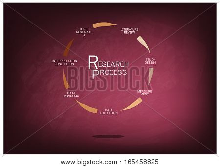 Business and Marketing or Social Research Process Seven Step of Qualitative Research Methods on Chalkboard.