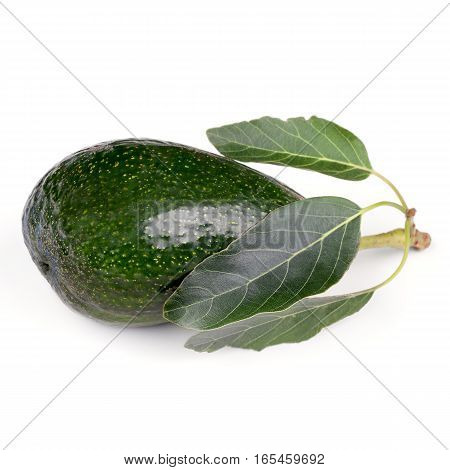 Avocado fruit with leaves isolated on white background.