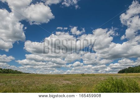 A bright sky with clouds over a summer grassy field.