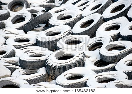 Lots of old big car tyres covered with snow