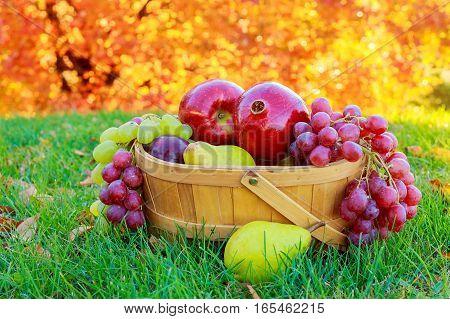 Huge group of fresh vegetables and fruits apple pear grape garnet