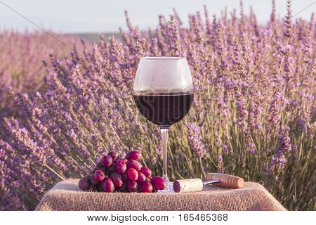 A photo of a glass of red wine with grapes in a lavender field, slightly toned