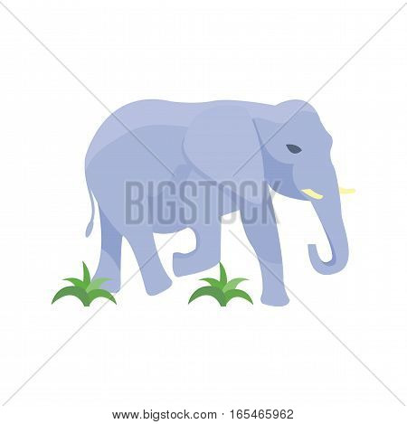 African elephant isolated on white. Baby animal indian zoo vector illustration. Nature mammal, trunk wildlife safari big tusk. Large strong zoo character.
