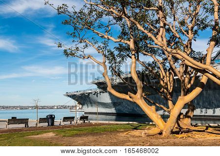 SAN DIEGO, CALIFORNIA - JANUARY 8, 2017:  Coral trees and the USS Midway aircraft carrier/museum at Tuna Harbor Park.