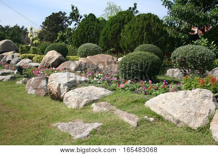 Lush flower with stone in the garden beautiful