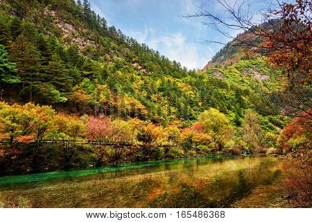 Beautiful River With Crystal Clear Water Among Fall Woods