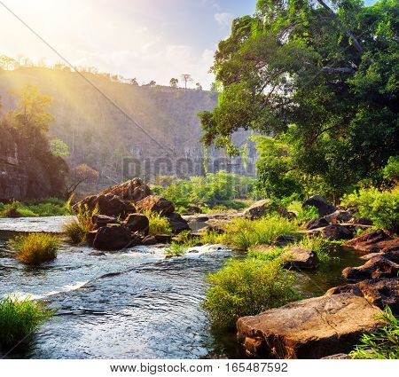 River With Crystal Water Among Woods. Sunny Forest Landscape