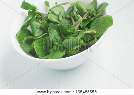 Fresh Watercress Leaves into a bowl over a white background