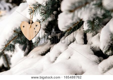of wood toys in the form of heart hanging in the branches of trees