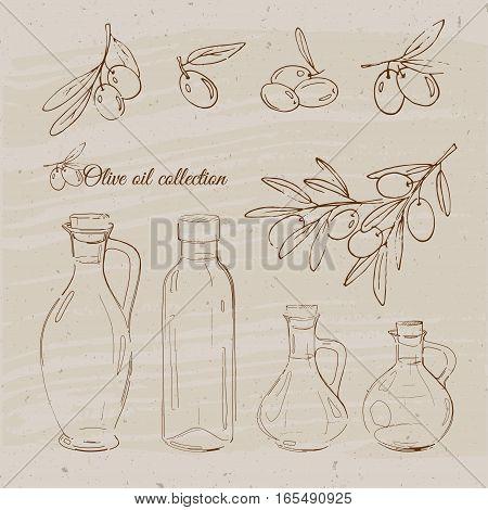 Vintage bottles of olive oil. Vector illustration with olives and bottles of olive oil.