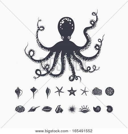 giant octopus isolated on white, set of sea creatures, shells and starfish, vector marine illustration